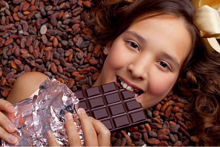 В шоколадном царстве