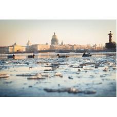 Санкт – Петербург собирает друзей! (Весенние каникулы, 9 дней)