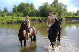 На быстром коне