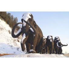 Новогодние выходные в Ханты-Мансийске