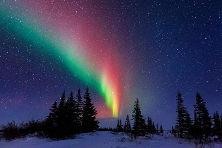 """За Полярным кругом: """"Чумовая Арктика"""""""