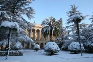 Абхазская рапсодия.  Новый год и Рождество