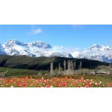 Жемчужины Кыргызстана