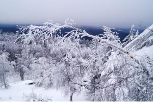 Почти в горах: Черная скала и Семибратка