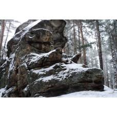 Каменное городище + Музей Ильменского заповедника