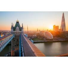 Лондон триумф