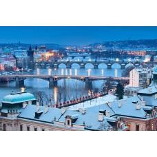 Прага + лечение в Карловых Варах