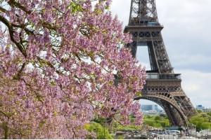 Париж на майские праздники