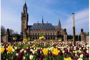 Амстердам+ Брюгге+ Брюссель+ Люксембург