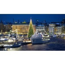 Новогодний экскурсионный тур  в Стокгольм