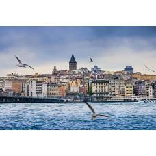 Стамбул (без экскурсий)